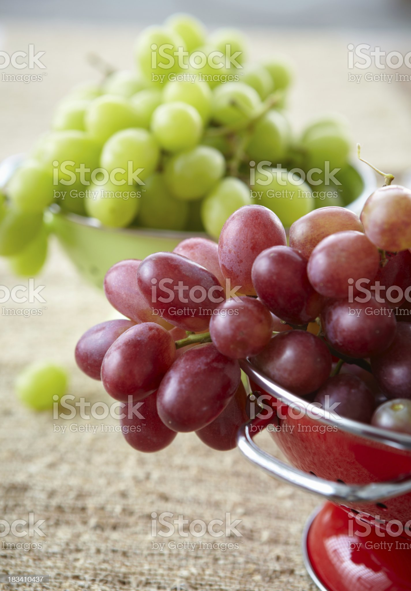 Red and green Grapes royalty-free stock photo