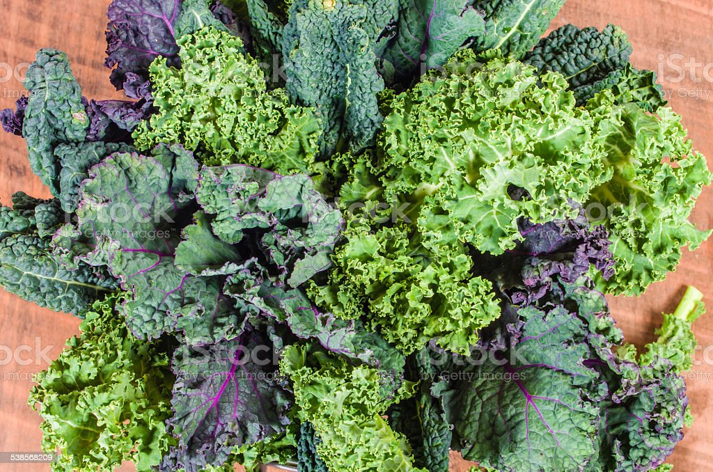Red and green kale arrangement stock photo