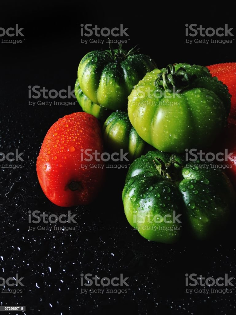 Red and green tomatoes stock photo