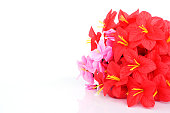Red and pink plastic flowers Ioslated on white backgrounds