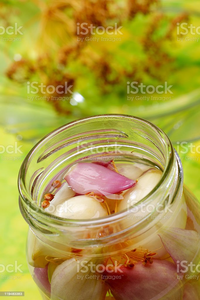 Red and white onions in jar stock photo