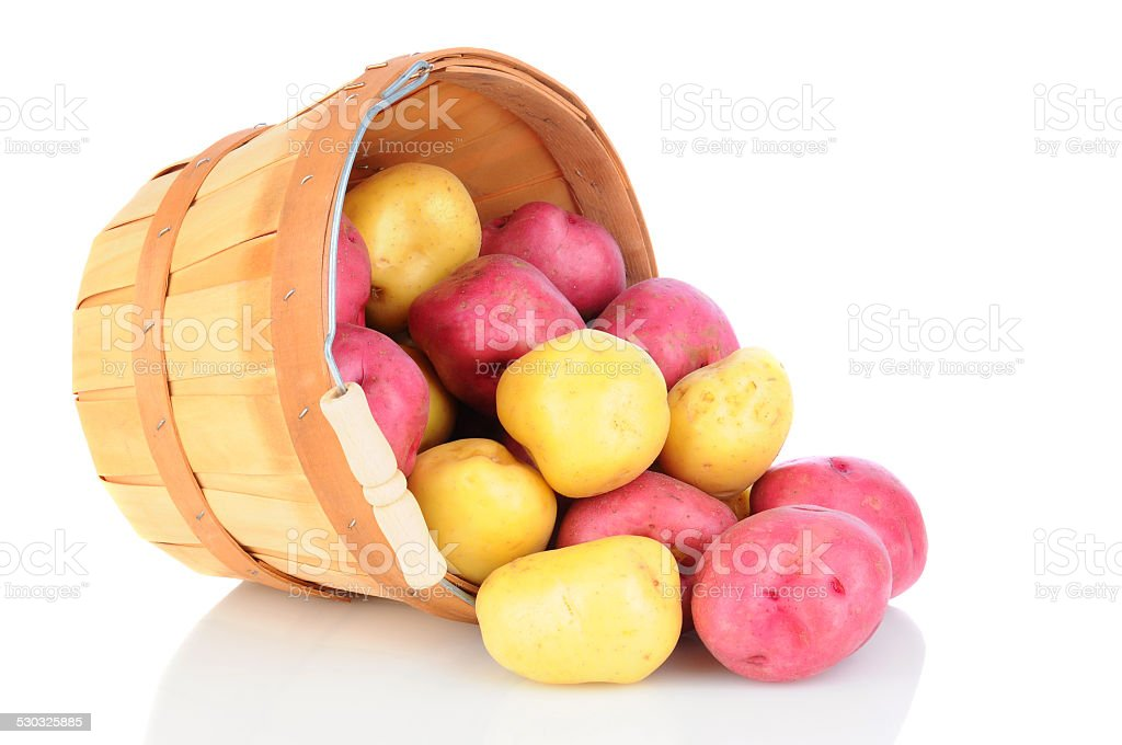 Red and White Potatoes Basket Spill stock photo