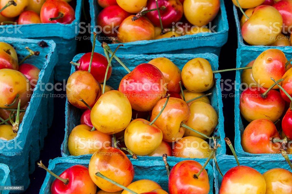 Red and yellow cherries stock photo