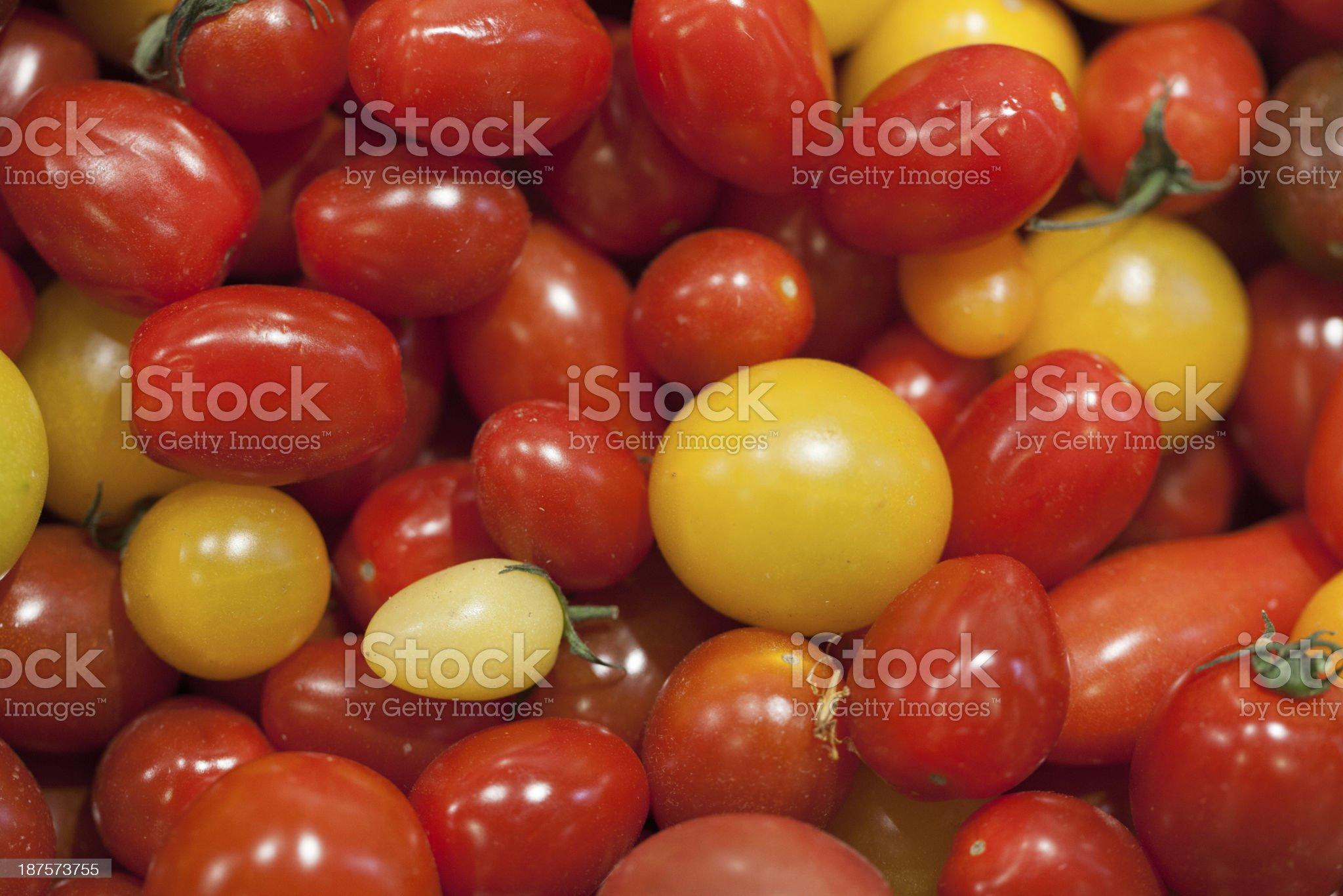 red and yellow cocktail tomatoes royalty-free stock photo