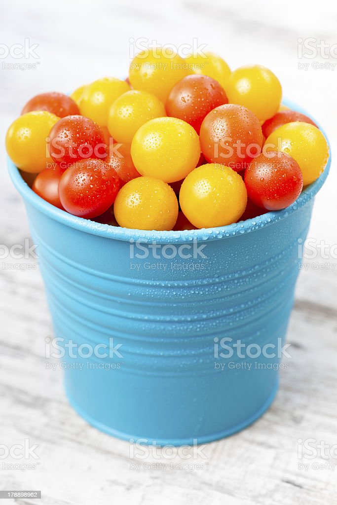 Red and yellow fresh cherry tomatoes with water drops royalty-free stock photo