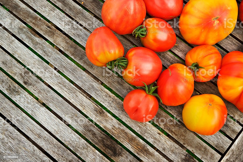 red and yellow homegrown tomatoes on weathered wooden table stock photo