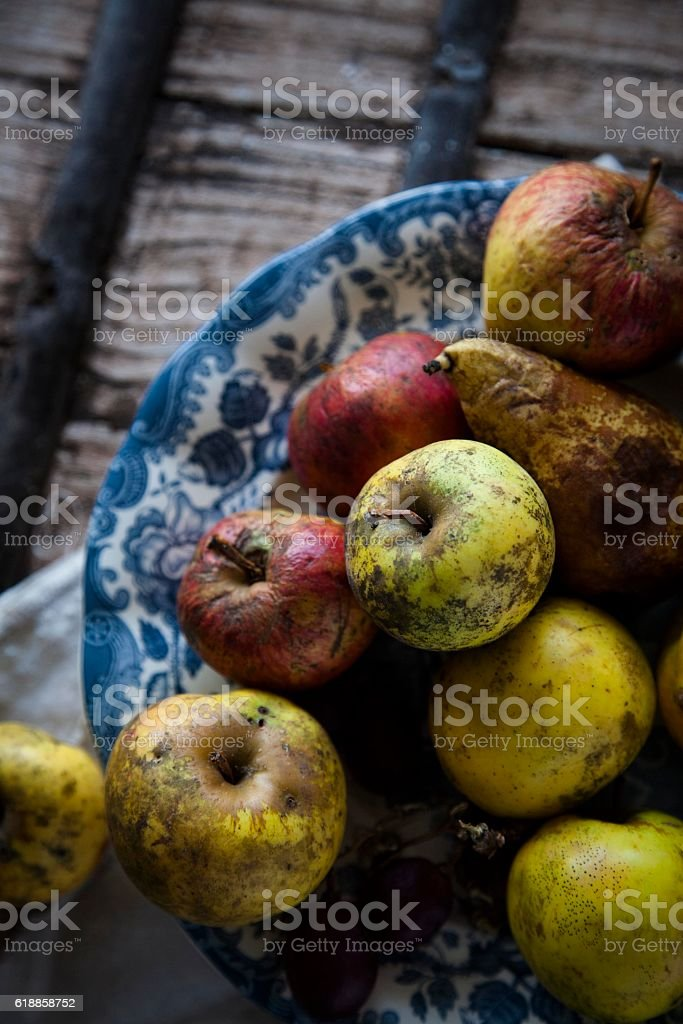 red and yellow old  apples in vintage plate stock photo