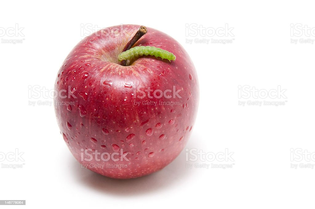 Red apple and green worm stock photo