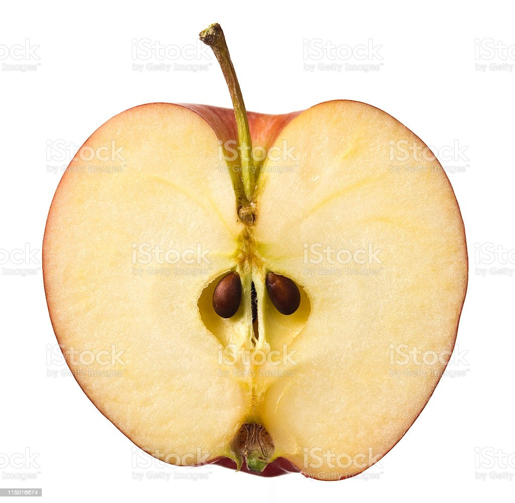 red apple cut in half stock photo 115016674 istock