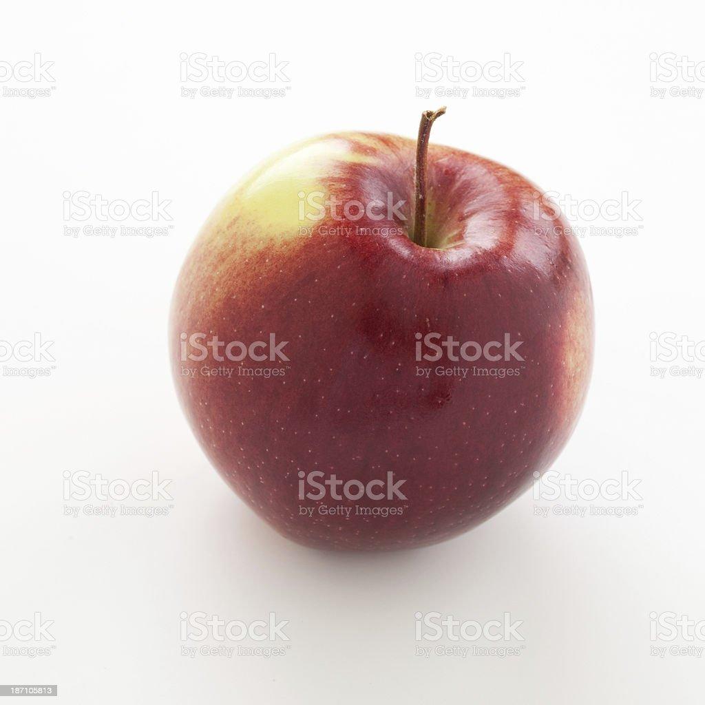 Red apple Empire stock photo