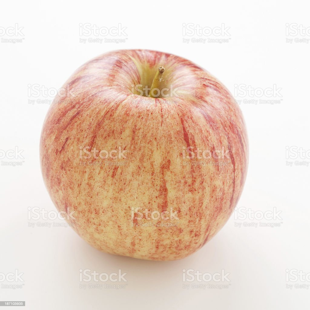 Red apple Gala stock photo