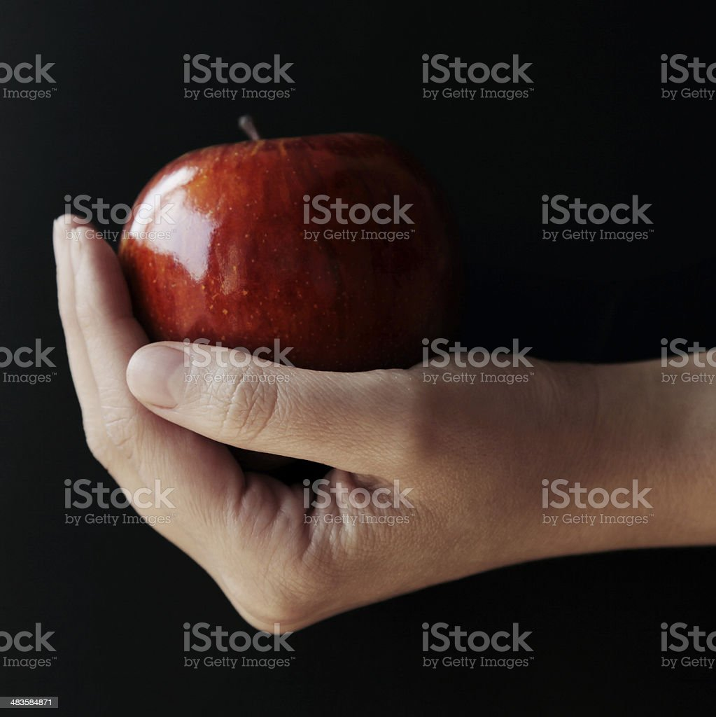 Red Apple in a young hand stock photo