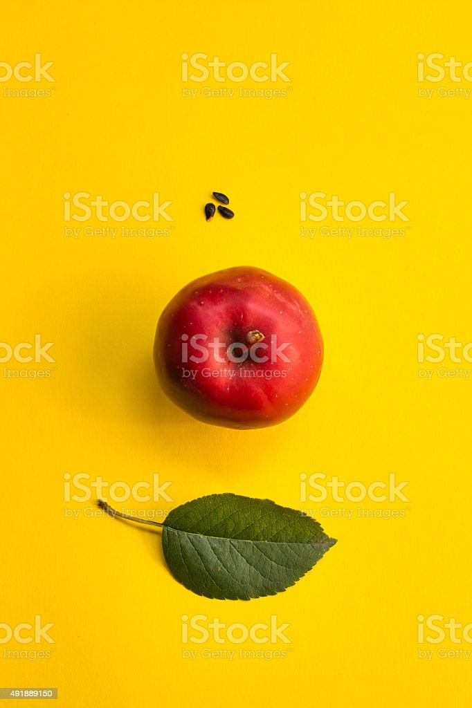 Red apple, leaf and seeds on yellow background stock photo