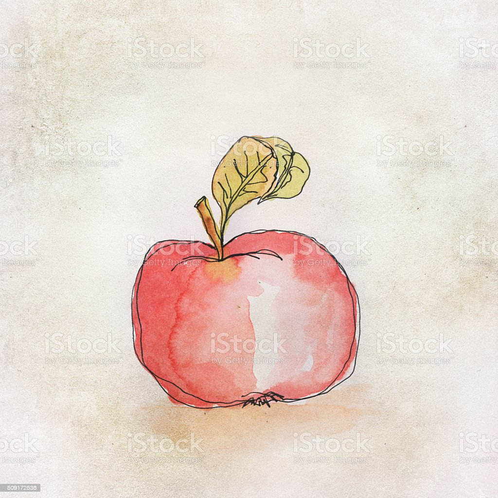 red apple water color illustration stock photo