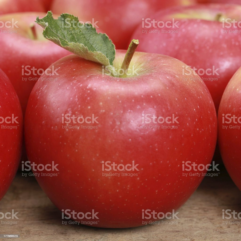 Red apple with a leaf royalty-free stock photo