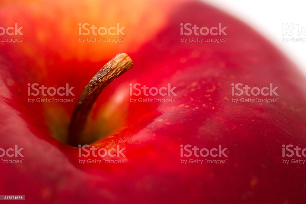 Red Apple with a stem close up stock photo