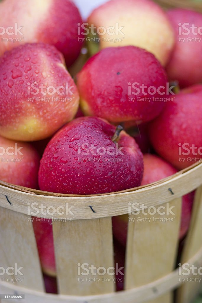 Red apple with waterdrops in the basket royalty-free stock photo