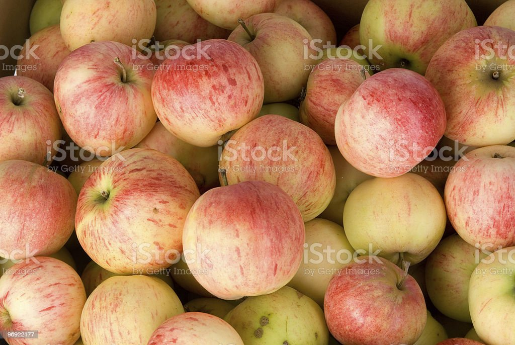 red apples background royalty-free stock photo