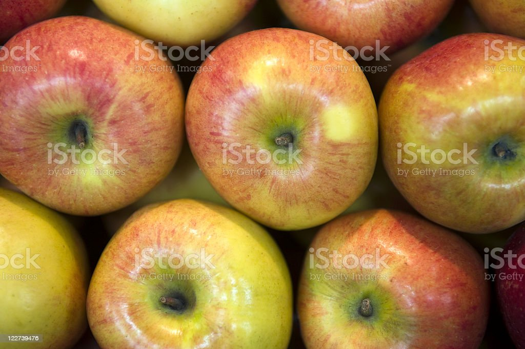 Red apples royalty-free stock photo