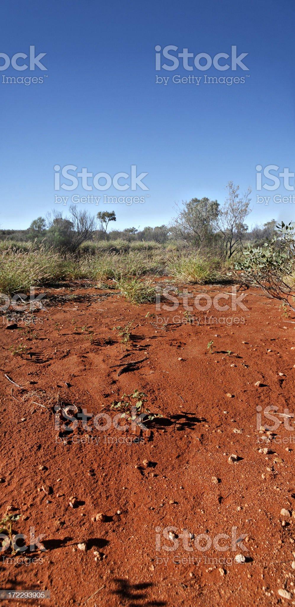 Red Australian land royalty-free stock photo