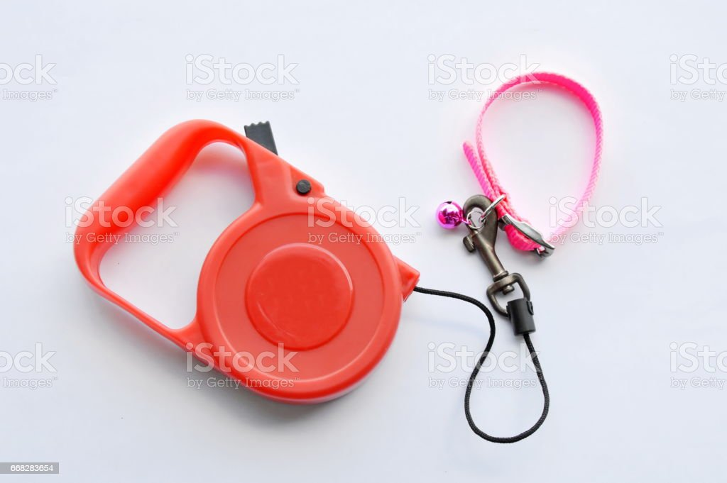 red automatic leash and pink nylon dog collar stock photo