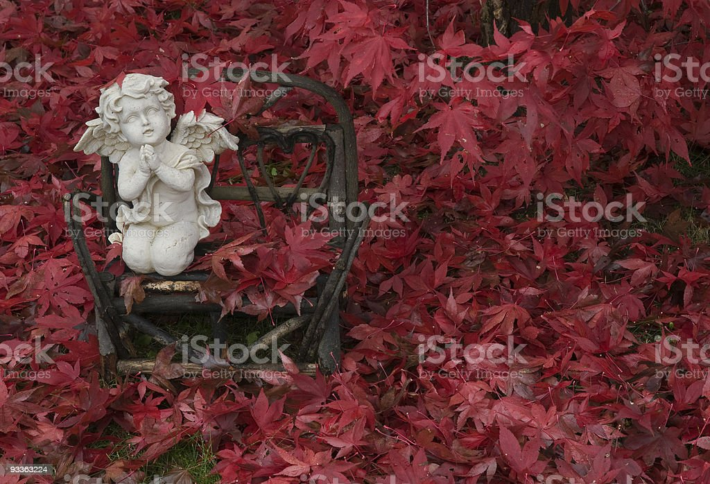 Red outono Angel foto royalty-free