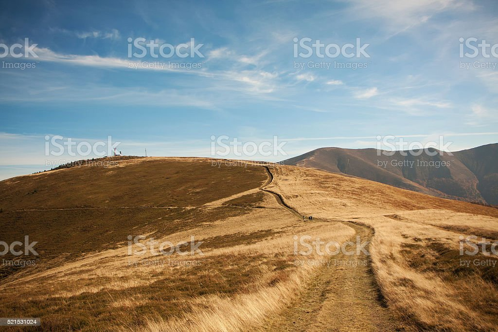 Red autumn in a Carpathian mountains. National park of Ukraine stock photo