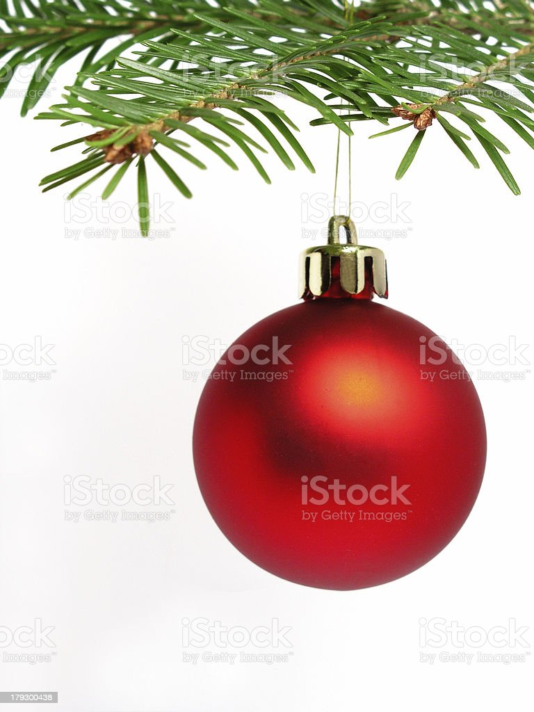 Red ball hanging from Christmas tree royalty-free stock photo
