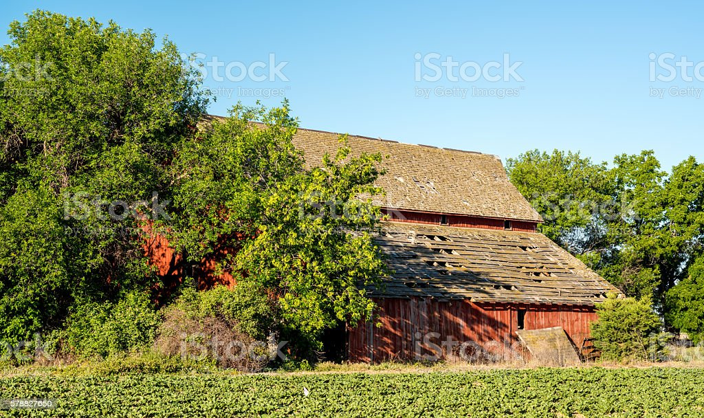 Red barn along with a farmers crops stock photo