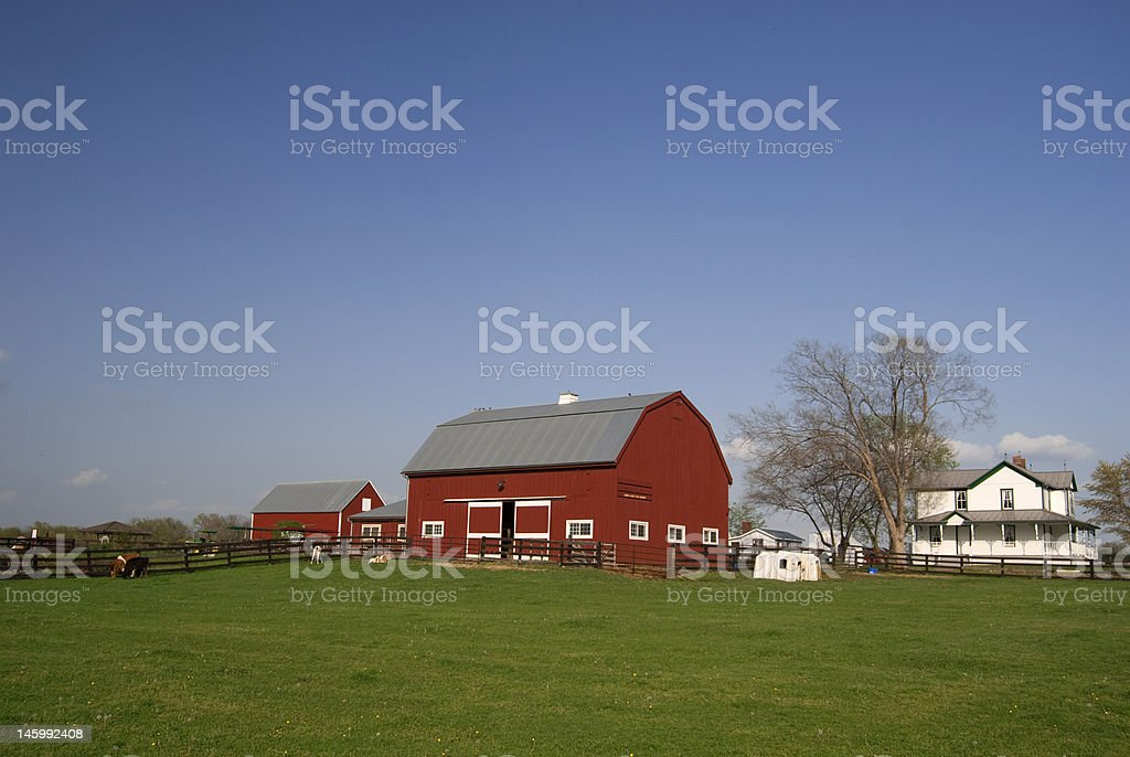 Red barn and white farm house stock photo