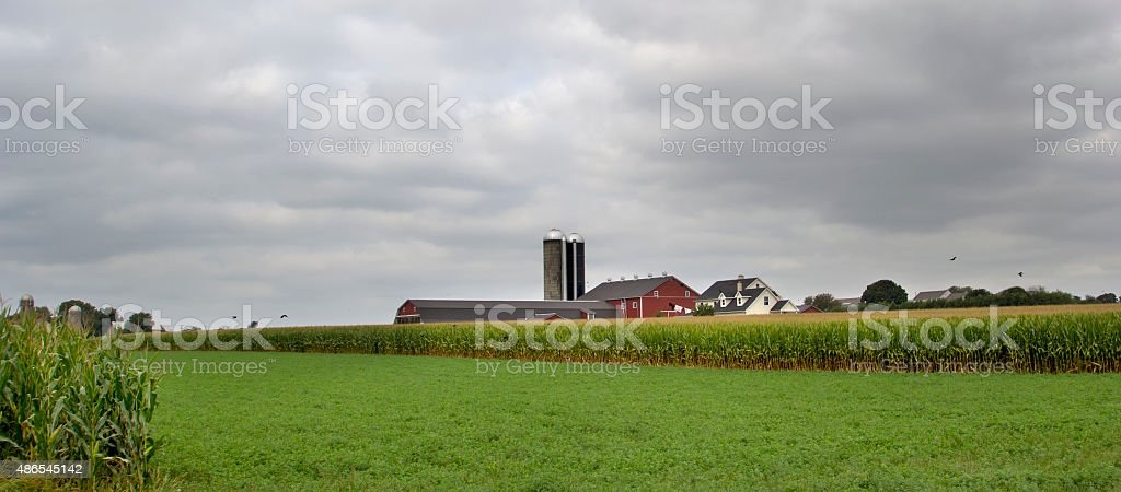 Red Barn in Amish Country stock photo