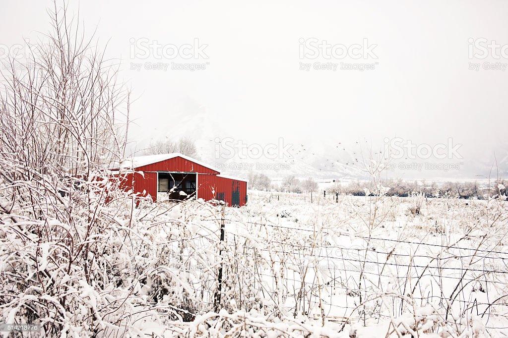 Red Barn In Winter Utah stock photo