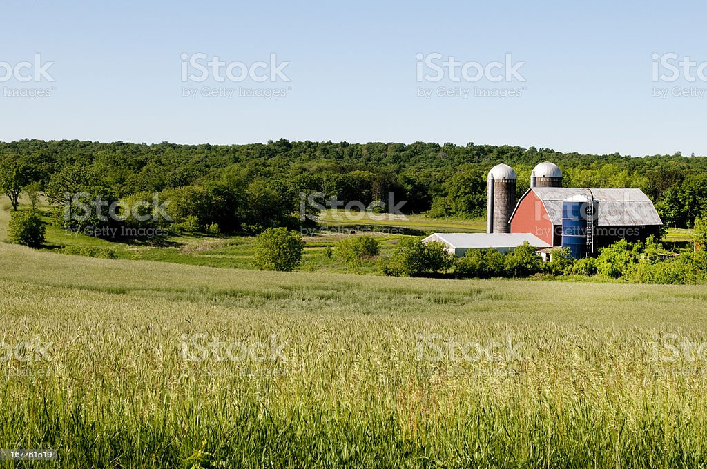 Red Barn in Wisconsin royalty-free stock photo