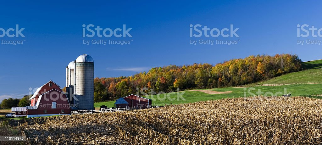 Red Barn on Autumn Afternoon stock photo