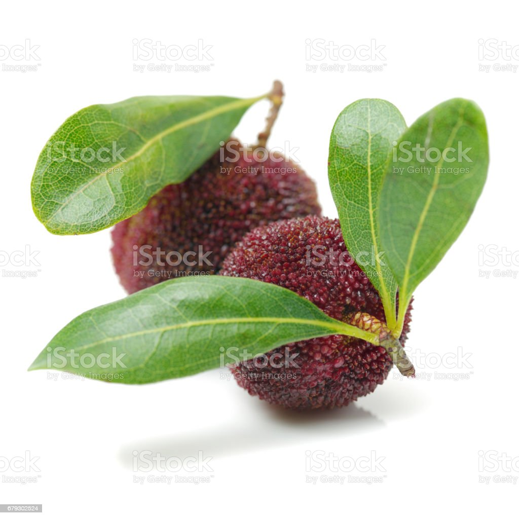 Red bayberry (Arbutus ) isolated on white background stock photo