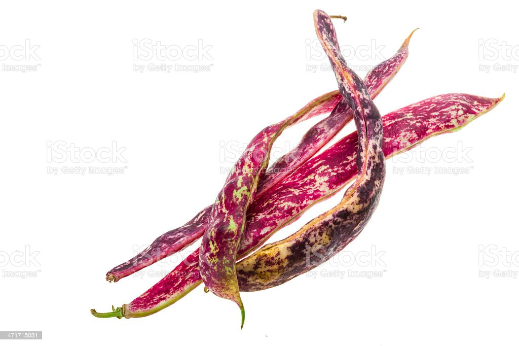 Red bean pod royalty-free stock photo