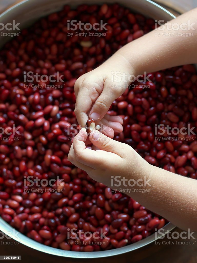 Red beans and baby hands stock photo