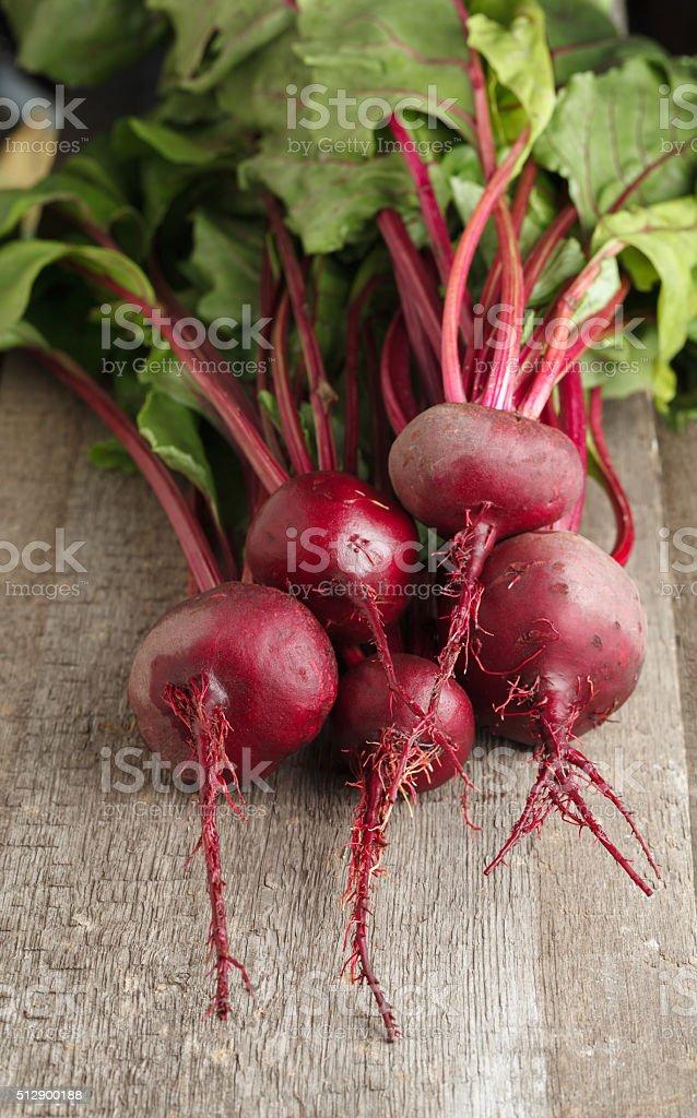 Red beet crop stock photo