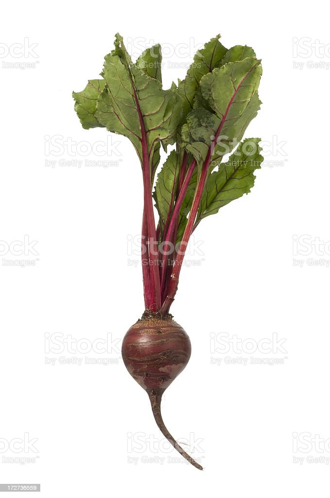 Red beet with top-isolated on white stock photo