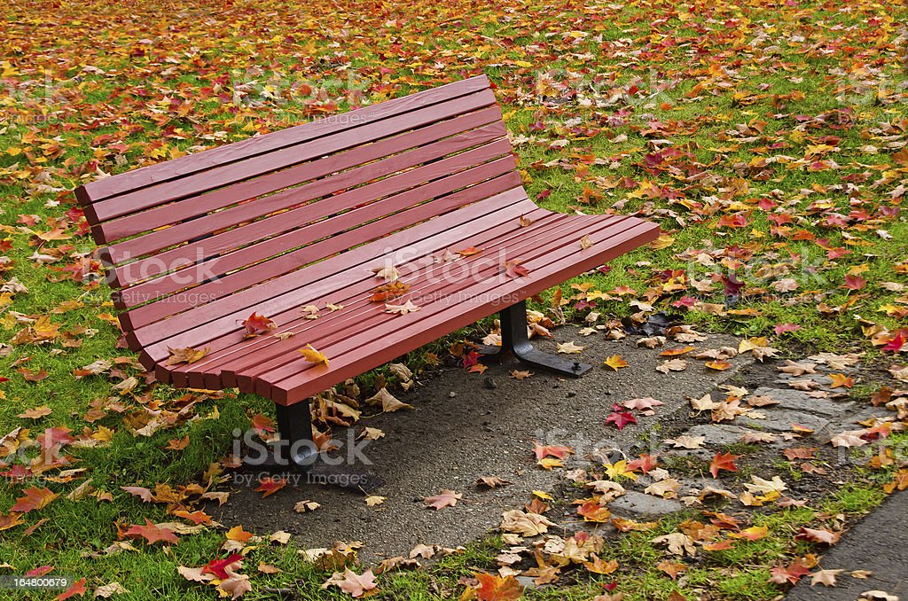 Red bench and autumn leaves royalty-free stock photo