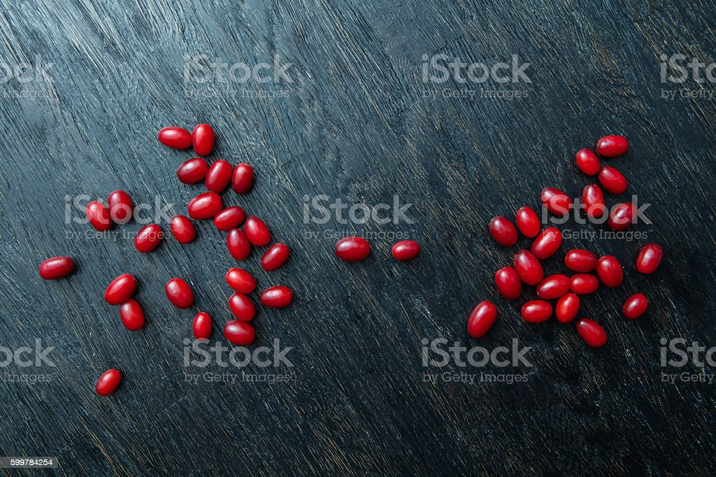 Red berries ripe dogwood stock photo