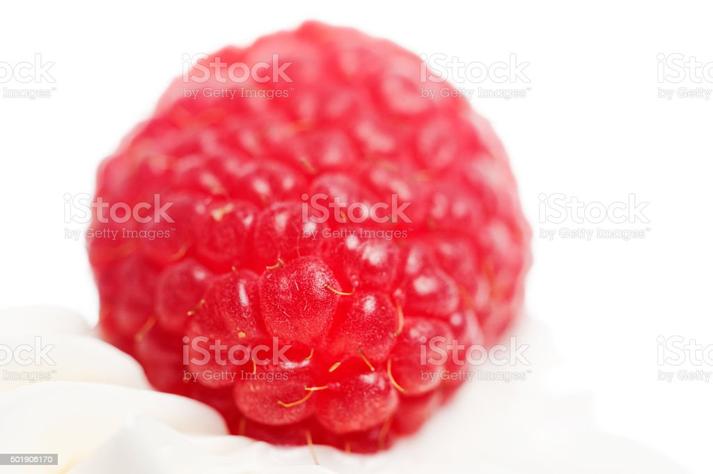 Red Berry and white cream stock photo