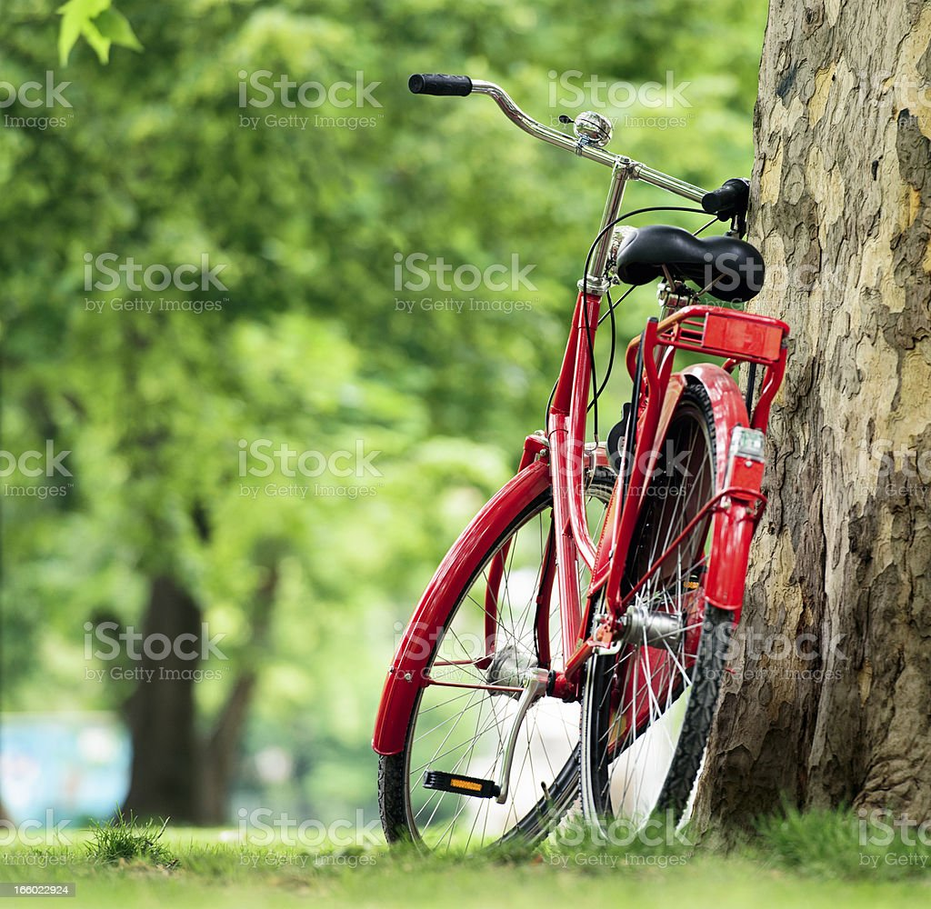 Red Bike in the Park stock photo