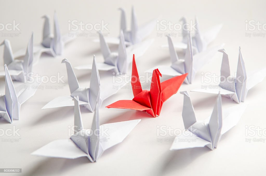 red bird flying different through a group stock photo