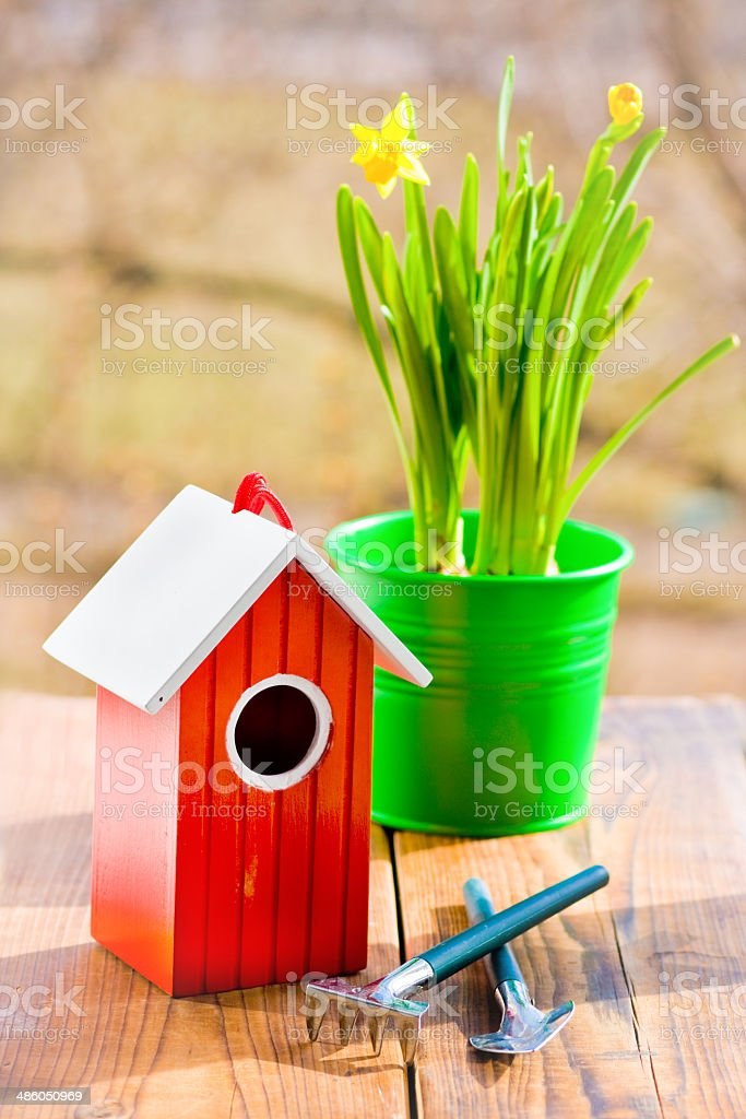 Red bird house and Narcissus in green pot and shovel in spring royalty-free stock photo