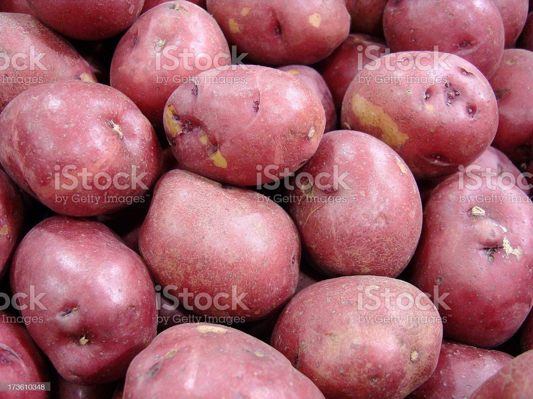 Red Bliss Potatos royalty-free stock photo