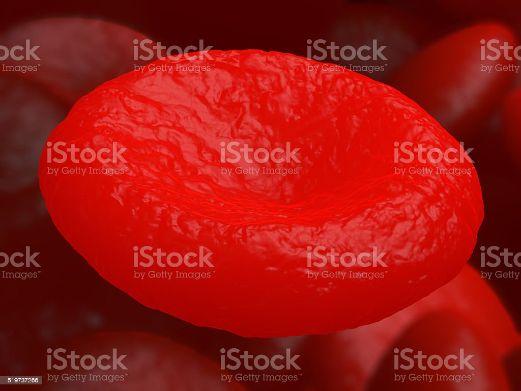 Red blood cell erythrocyte. stock photo