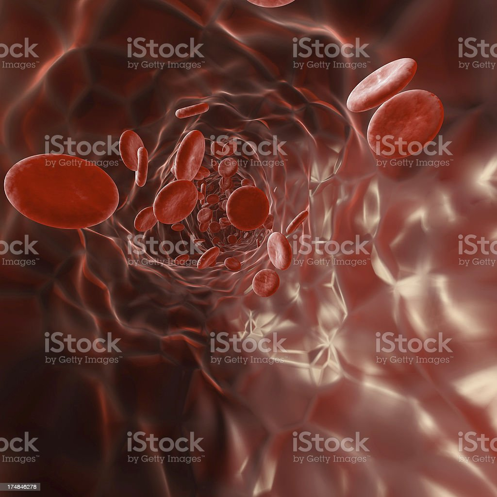 Red Blood Cells within a vein royalty-free stock photo