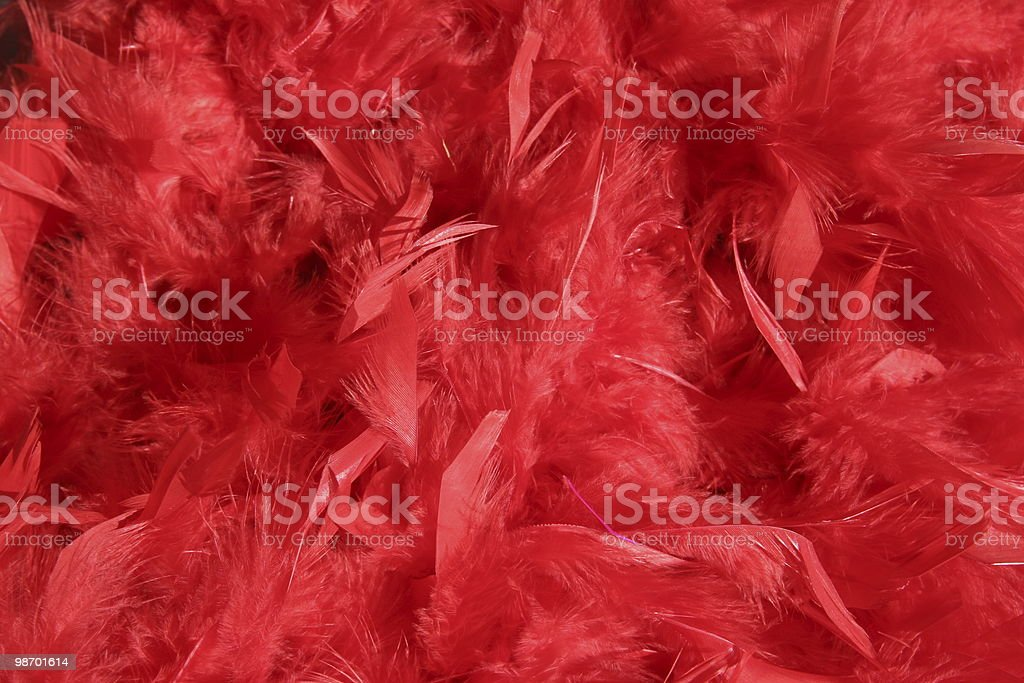 Red boa background royalty-free stock photo