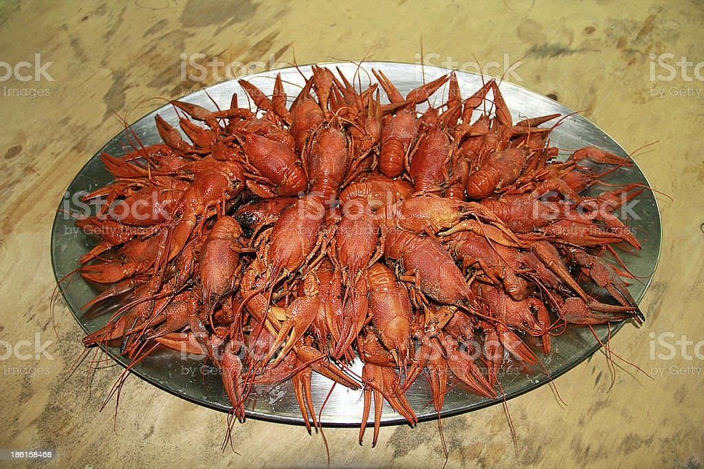 Red boiled crawfishes in oval dish royalty-free stock photo